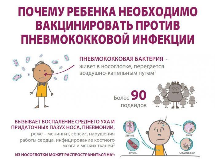 Схема, объясняющая опасность пневмококковой инфекции
