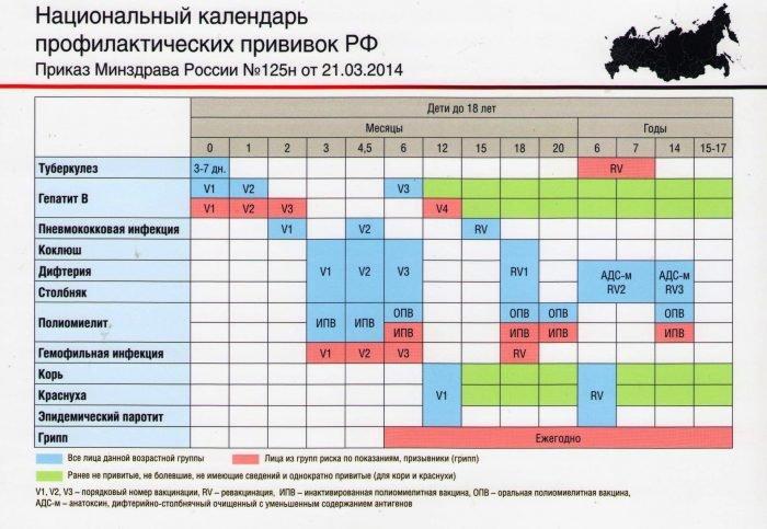 Национальный календарь профилактических прививок РФ