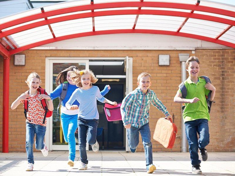 Как проводят летние каникулы школьники разных стран мира