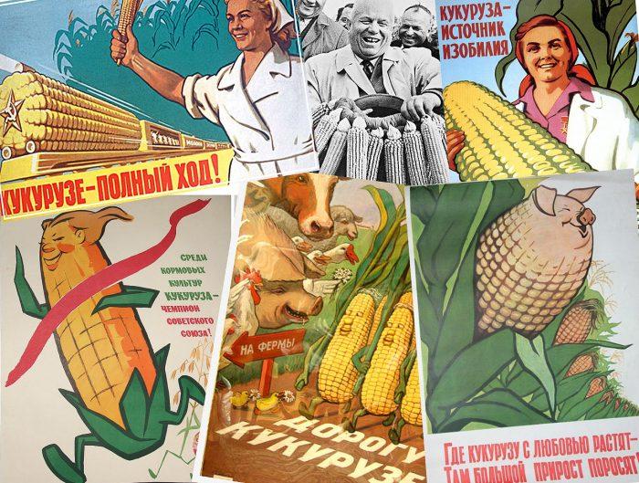 Коллаж из советских агитплакатов про кукурузу