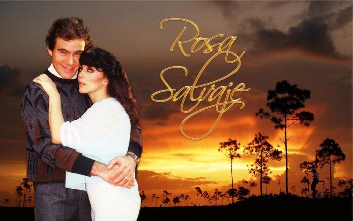 Постер сериала «Дикая Роза»