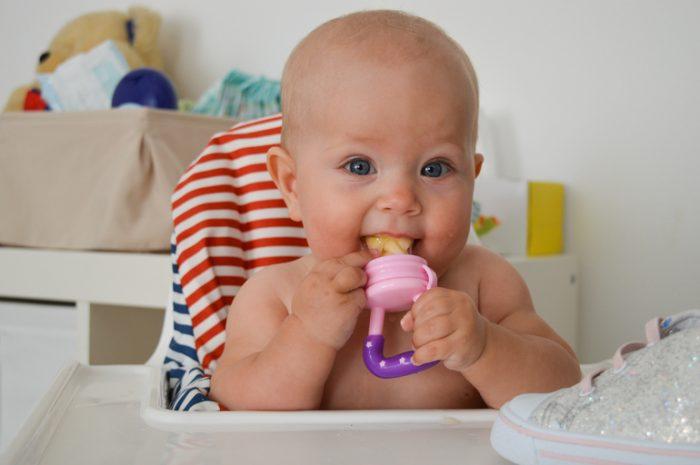 Младенец держит во рту силиконовый ниблер, наполненный кусочками фрукта
