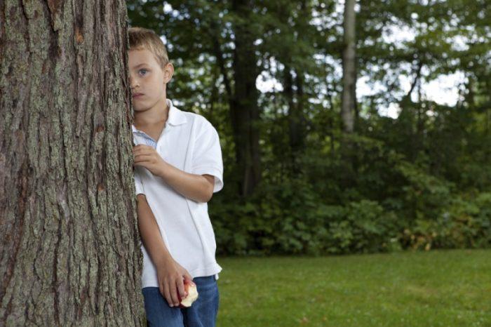 мальчик прячется за деревом