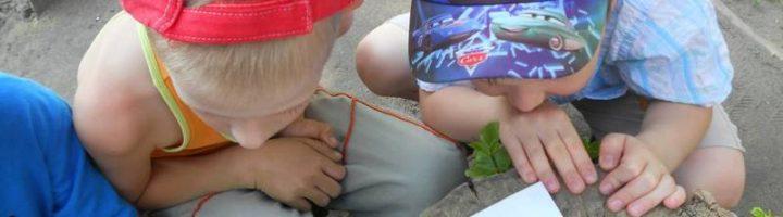 Дети рассматривают жука