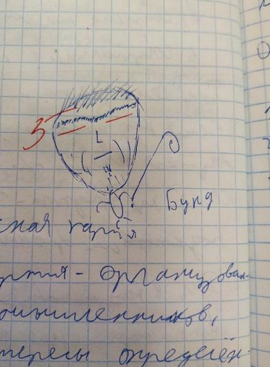 Оценка «5», учитель подрисовал глаза (минусы) у нарисованной учеником рожицы