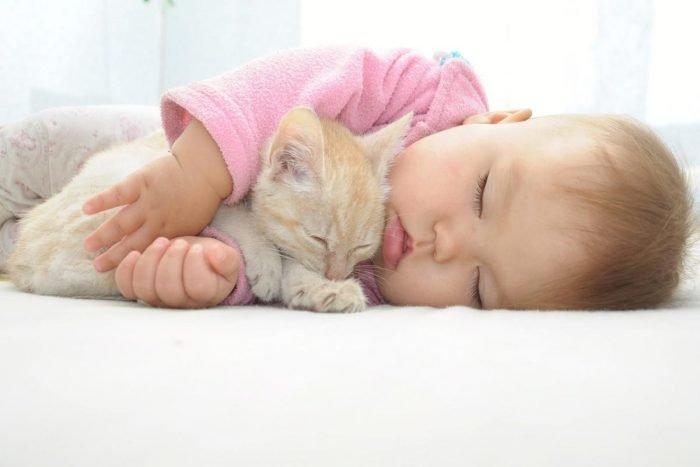 Младенец обнимает кошку во сне