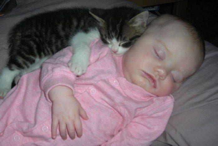 Кошка обнимает младенца за плечико