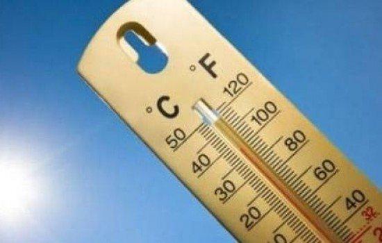 Термометр показывает +37 °С