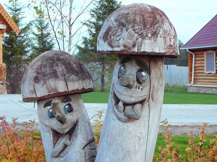 смешные грибы