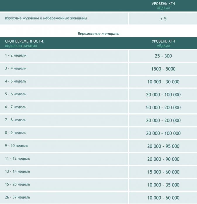 Таблица норм ХГЧ