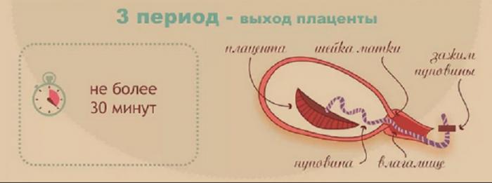 Рождение плаценты