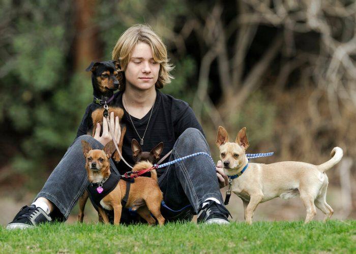 Мальчик-подросток в окружении собак