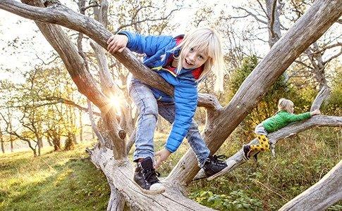 Девочка в джинсах сидит на дереве