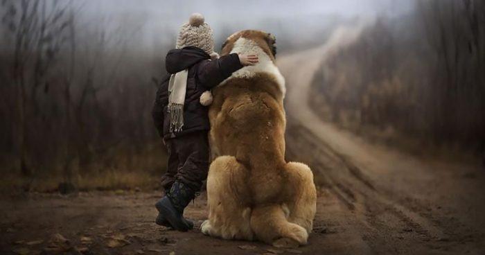 Ребёнок обнимает собаку