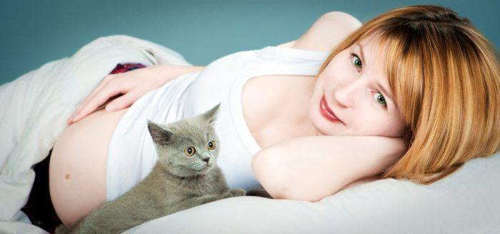 Кошка лежит рядом с беременной женщиной