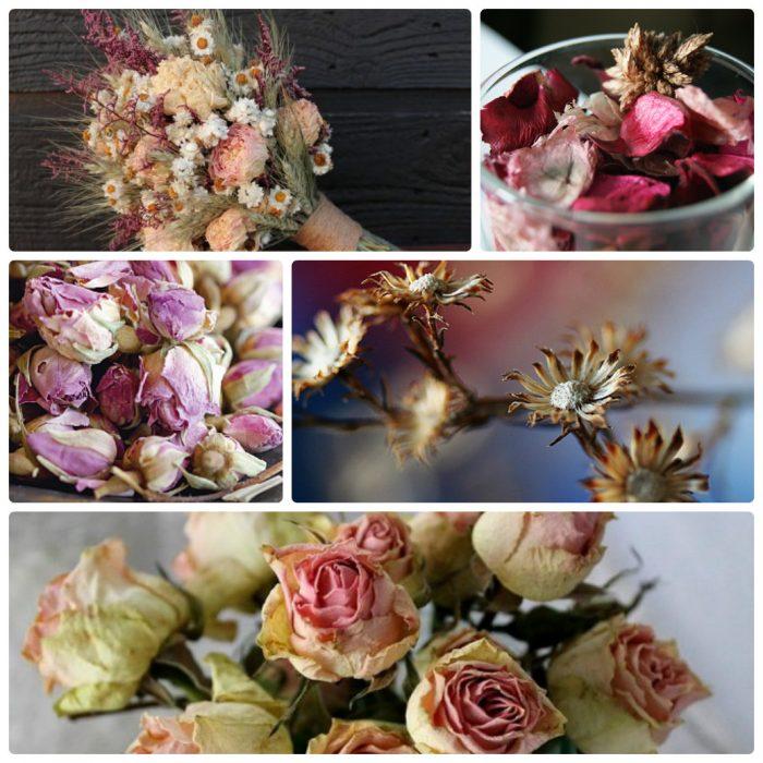 Высушенные букеты цветов