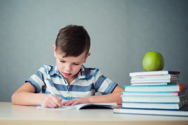 Мальчик делает уроки, рядом стопка книг