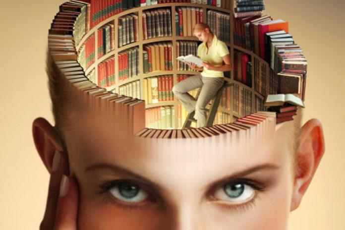 Библиотека в голове человека