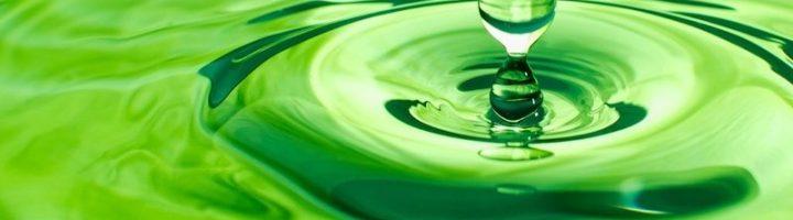 Зелёные воды – нередкое явление у рожениц, ведь эту патологию вызывают очень многие факторы.