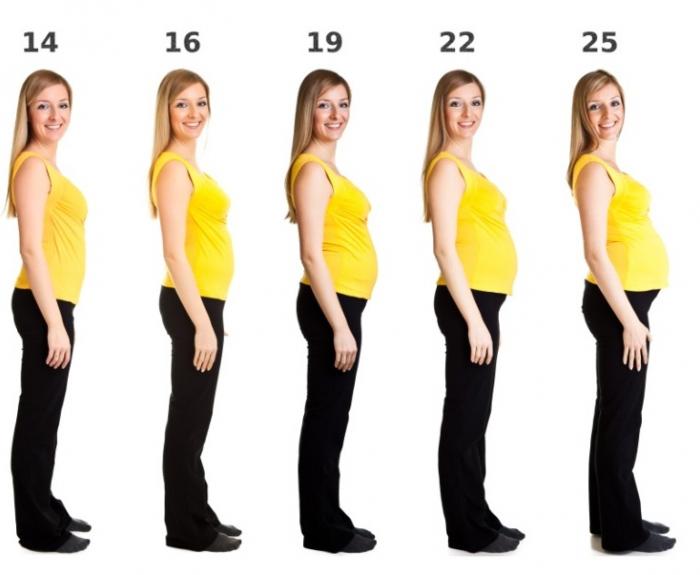 Фот женщины на разных неделях второго триместра