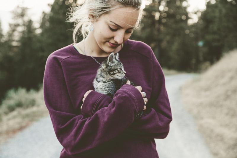Примета сработала: приютила бездомную кошку, а вскоре вышла замуж