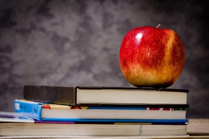 Новое пособие: кому и сколько могут выплатить на сборы ребенка в школу