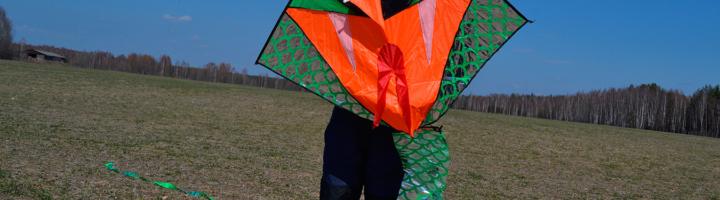 Воздушный змей: как сделать своими руками из бумаги и других материалов
