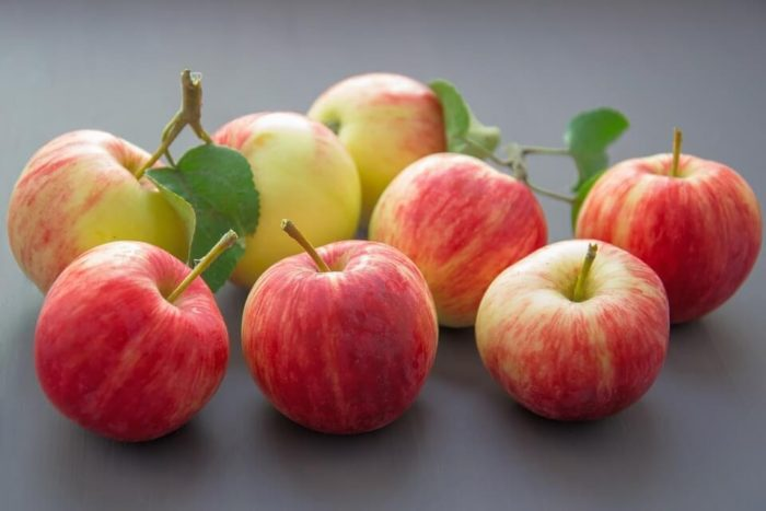 Яблоко для прикорма: характеристика