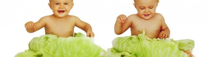 Два малыша сидят в капусте